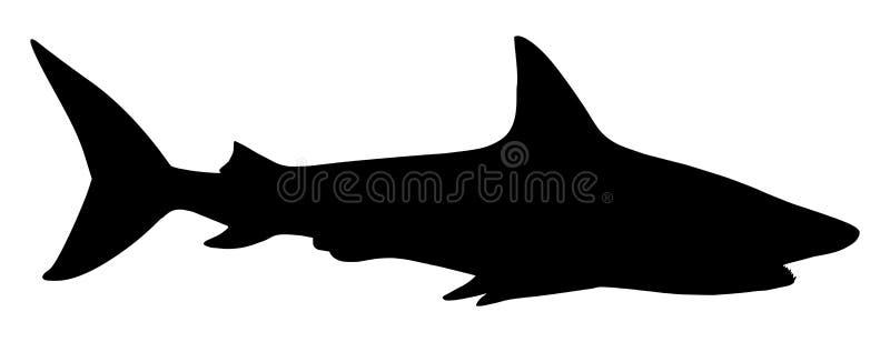 Requin illustration libre de droits