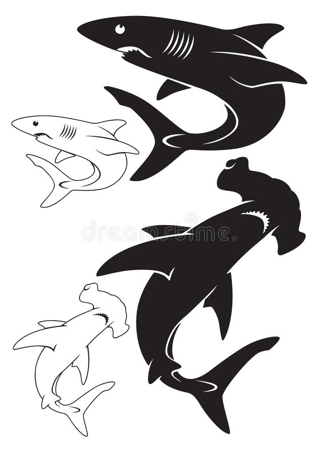Requin blanc illustration libre de droits