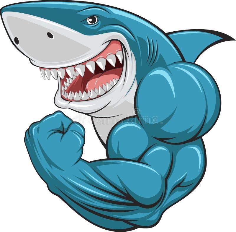 Requin blanc photo stock
