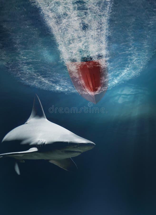 Requin menaçant sous un bateau de vitesse photographie stock libre de droits