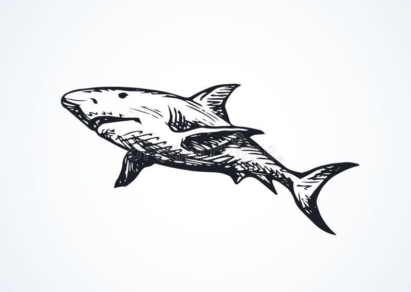 Requin Retrait de vecteur illustration stock