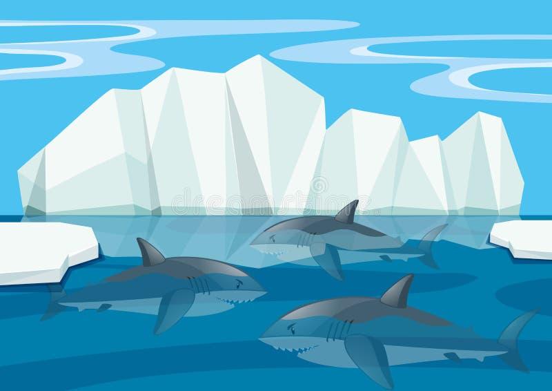 Requins nageant sous la mer illustration de vecteur