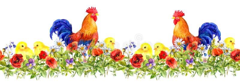 Resa upp tuppen och små fågelungar i gräs, blommor seamless modell vattenfärg arkivfoto