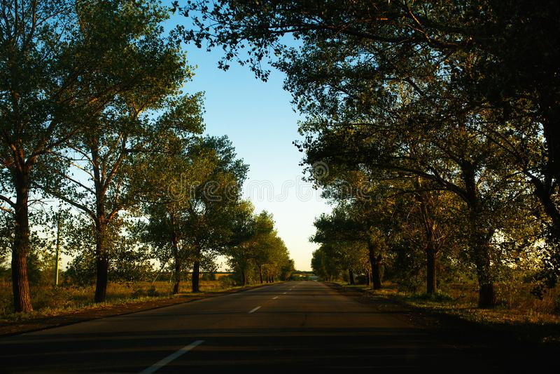Resa väg tidigt på morgonen royaltyfri fotografi