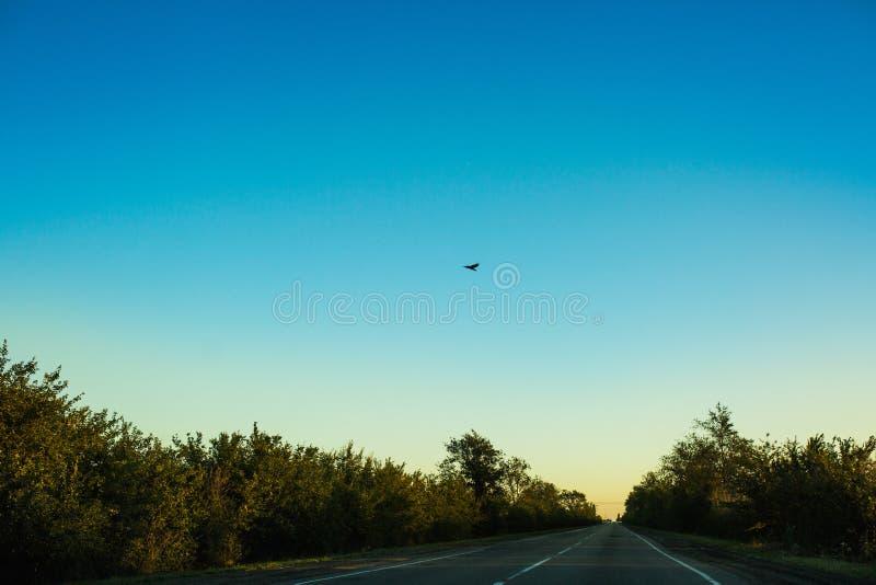 Resa väg tidigt på morgonen royaltyfri bild