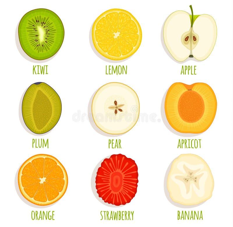 Resbale la fruta del círculo Sistema de fruta cortada vector libre illustration