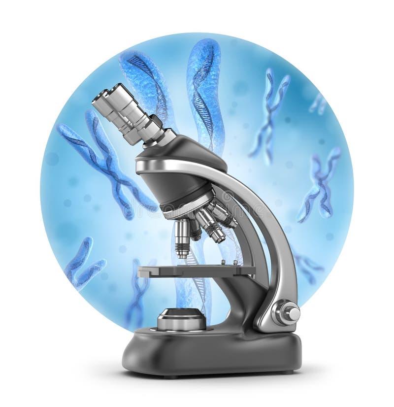 Research illustration : Chromosome x, DNA Strands vector illustration