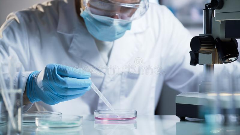 Researcher conducting scientific studies to confirm the quality of cosmetics. Stock video royalty free stock image