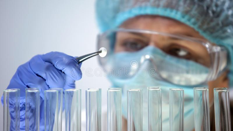 Researcher holding tablet, conducting medication quality control, effectiveness. Stock photo royalty free stock photography
