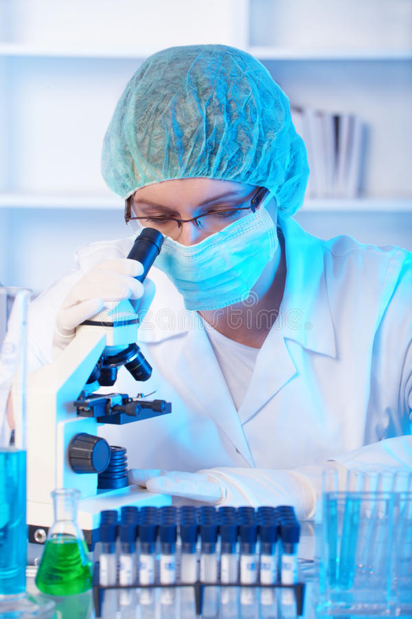 Researcher using a microscope in a laboratory. Scientific researcher using a microscope in a laboratory stock photos