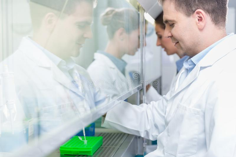 Researchers in science lab preparing samples stock images