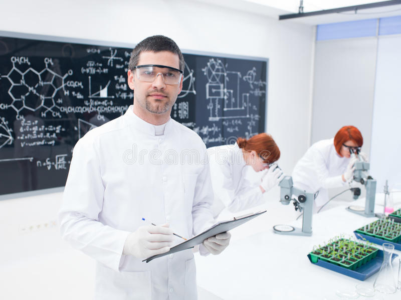 Download Researchers Working In A Chemistry Lab Stock Image - Image: 31257717