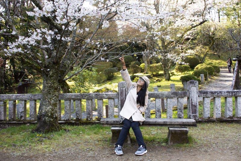 Resenärer thailändska kvinnor som har porträtt med Sakura-trädet i Naritasan-plumträdgården i Narita-parken i Chiba i Tokyo, Japa royaltyfria bilder