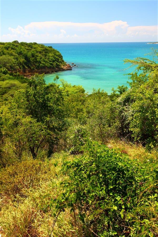 Reserva de Guanica - Puerto Rico foto de stock royalty free