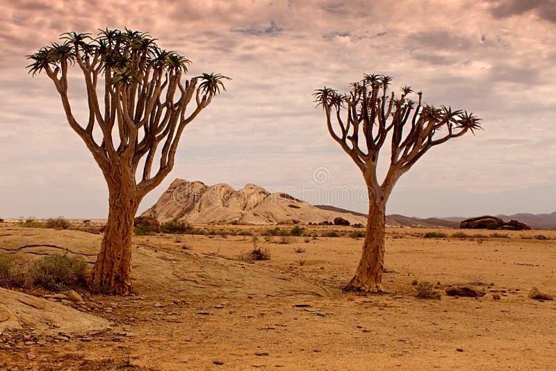 Reserva de naturaleza de Naukluft, desierto de Namib, Namibia imágenes de archivo libres de regalías