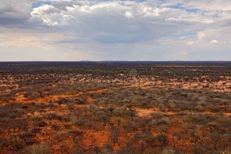 Reserva de naturaleza de Okonjima, sabana del desierto en el paisaje de Namibia Bosque seco con las nubes grises de la tormenta e fotos de archivo
