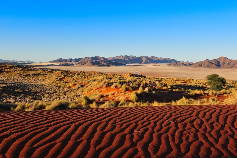 Reserva de natureza da margem de Namib (Namíbia) fotografia de stock