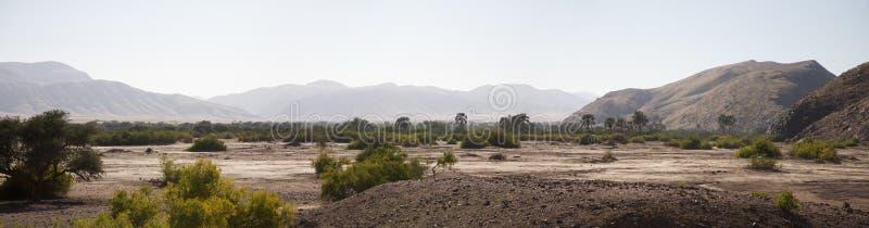 Reserva del juego de Kaokoland en Namibia fotografía de archivo