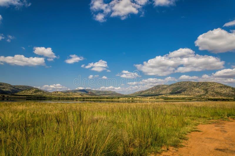 Reserva del juego del parque nacional de Pilanesberg, Suráfrica fotos de archivo libres de regalías