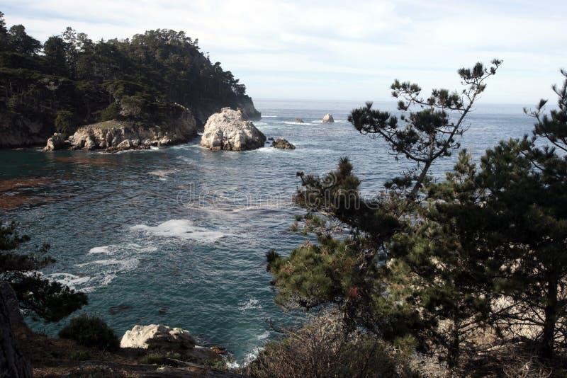Reserva do estado de Lobos do ponto, Califórnia imagem de stock