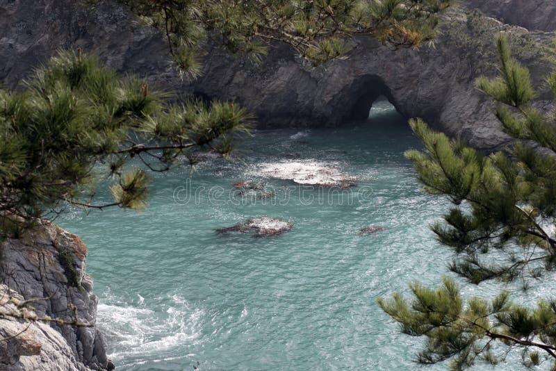 Reserva do estado de Lobos do ponto, Califórnia imagens de stock royalty free