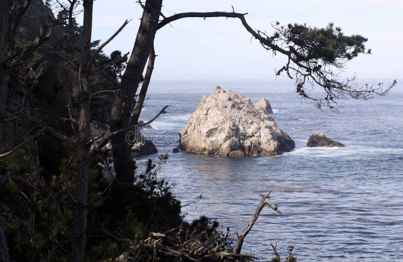 Reserva do estado de Lobos do ponto, Califórnia foto de stock