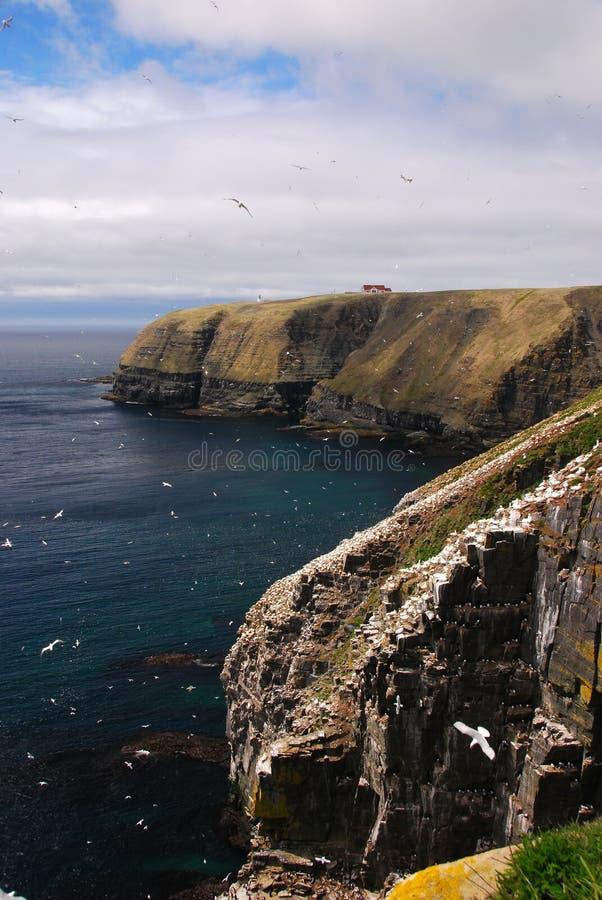 Reserva ecológica del ave marina del St. Maria del cabo imagenes de archivo