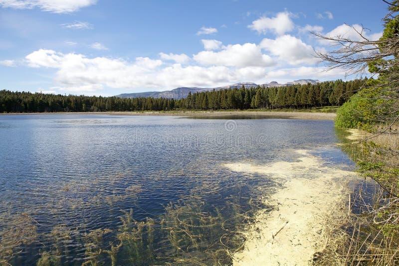 Reserva nacional de Coyhaique, Chile imagen de archivo