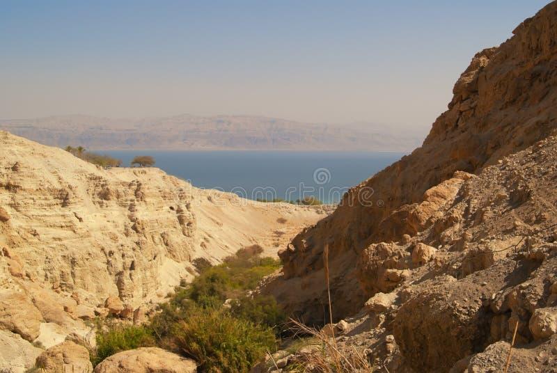 Reserva nacional de Ein Gedi foto de stock
