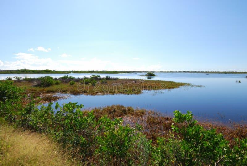 Reserva nacional de la fauna de la isla de Merritt fotos de archivo