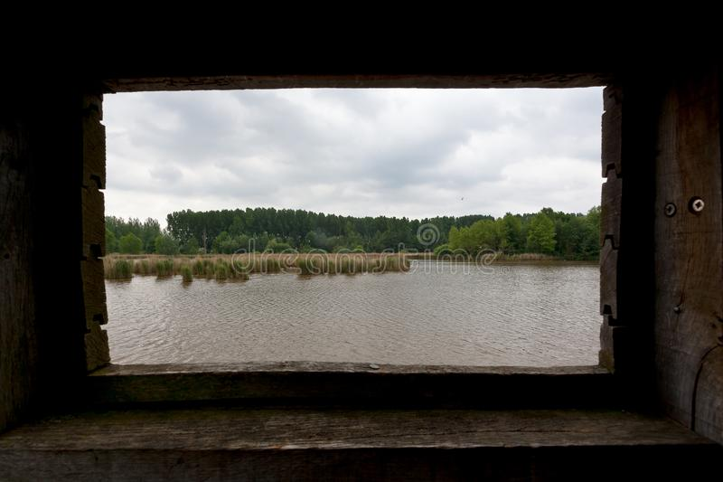 Reserva natural de madeira do lago da costa da cabine da caça de Reed, het Vinne, Zoutleeuw, Bélgica imagens de stock royalty free