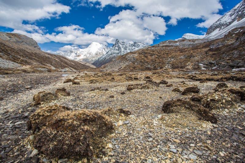 Reserva natural de Yading imagem de stock royalty free