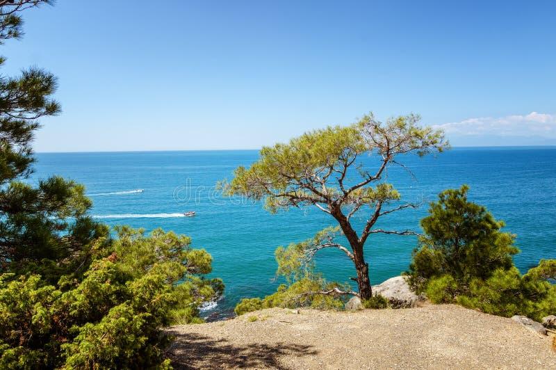 Reserva natural del soporte Karaul-Oba, Crimea, ciudad de Sudak, el Mar Negro foto de archivo
