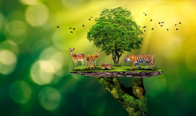 A reserva natural do conceito conserva as mãos humanas da ecologia do naco do alimento do aquecimento global dos cervos do tigre  ilustração stock