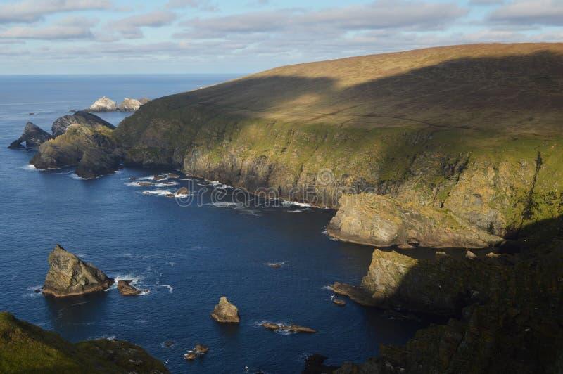 Reserva natural em Unst, a ilha de Hermaness de Shetland a mais do norte fotografia de stock royalty free