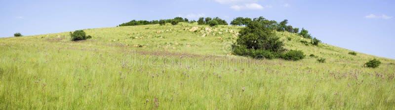 Reserva Natural Rietvlei, Gauteng, Sudáfrica foto de archivo