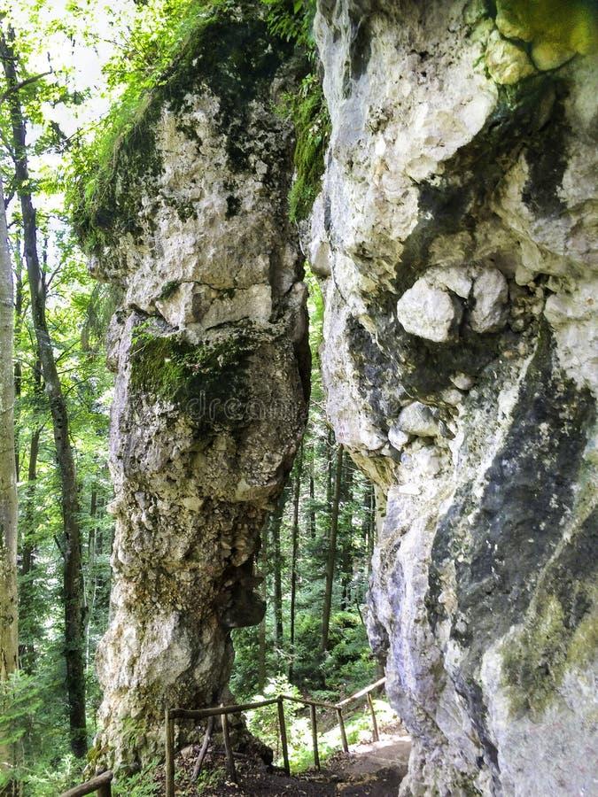 Reserva natural rumana de la montaña imagen de archivo libre de regalías