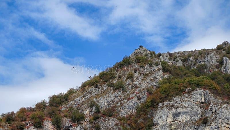 Reserva natural Uvac foto de stock royalty free