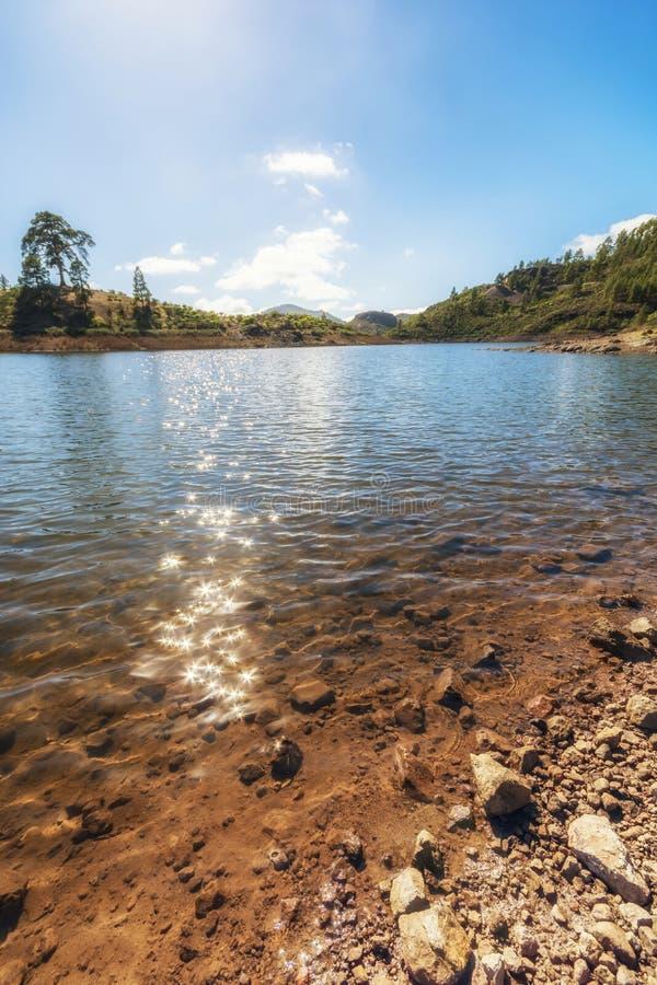 Reserva Presa de las Ninas en las montañas de Gran Canaria fotografía de archivo libre de regalías