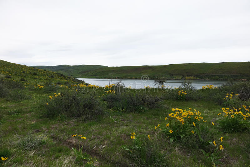 Reservatório de Mann Creek, Idaho imagens de stock