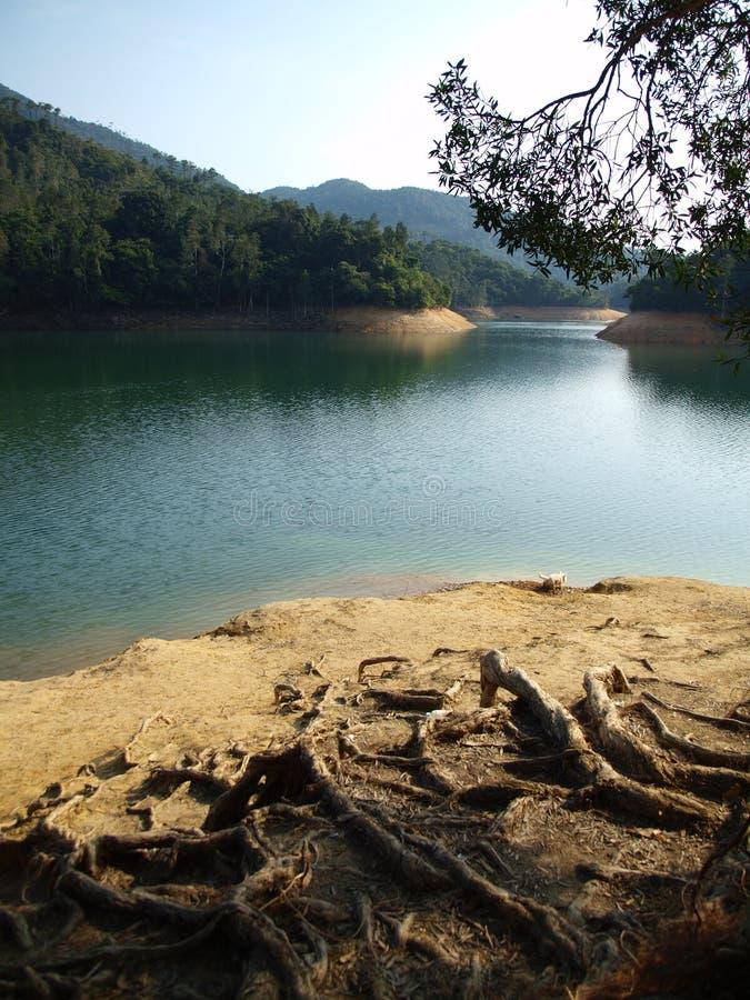 Reservatório de Shing Mun imagem de stock