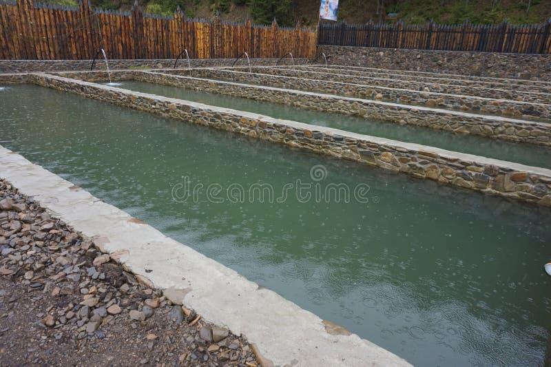 Reservatórios com água para peixes crescentes imagem de stock