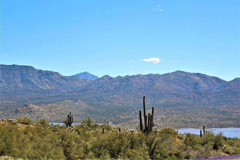 Reservat?rio de Bartlett Lake, Maricopa County, estado do Arizona, opini?o c?nico da paisagem do Estados Unidos fotos de stock royalty free