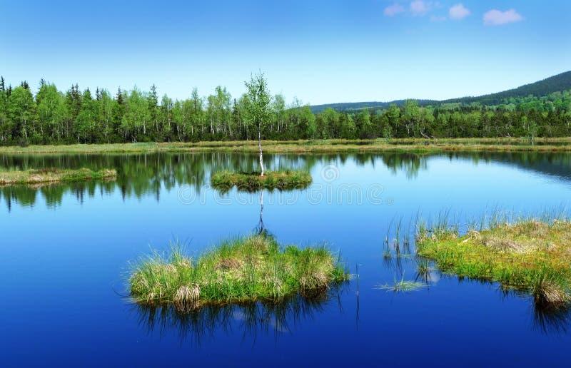 reservation för lakemorasstorv arkivbilder