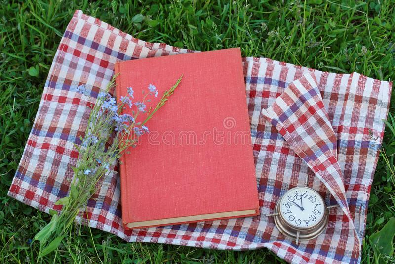 Reserve con una cubierta en blanco en la hierba, visión superior Lectura al aire libre fotografía de archivo