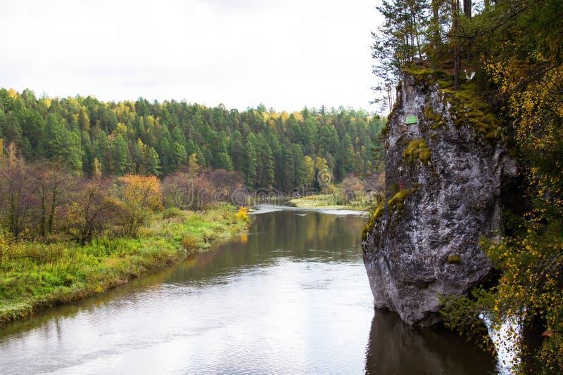 Reserve deer streams. Nature deer streams River Forest Reserve ural stones stock photos