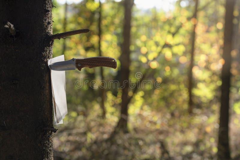 Reserve las páginas pegadas en un árbol con un cuchillo foto de archivo
