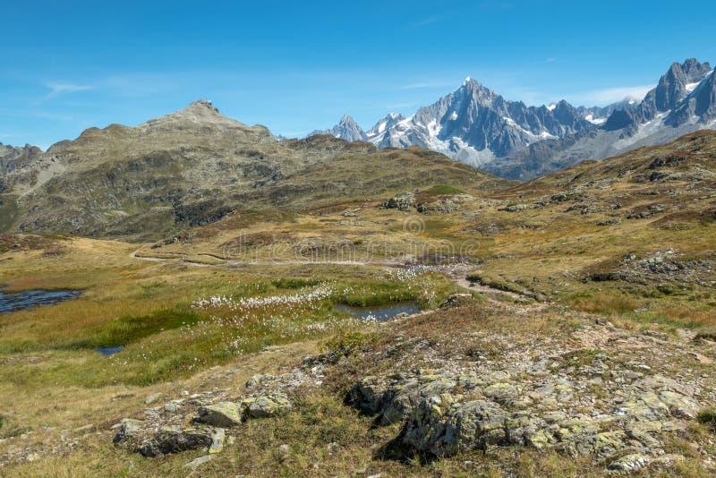Reserve Naturelle de Carlaveyron nahe Chamonix und Mont Blanc, Frankreich stockbilder