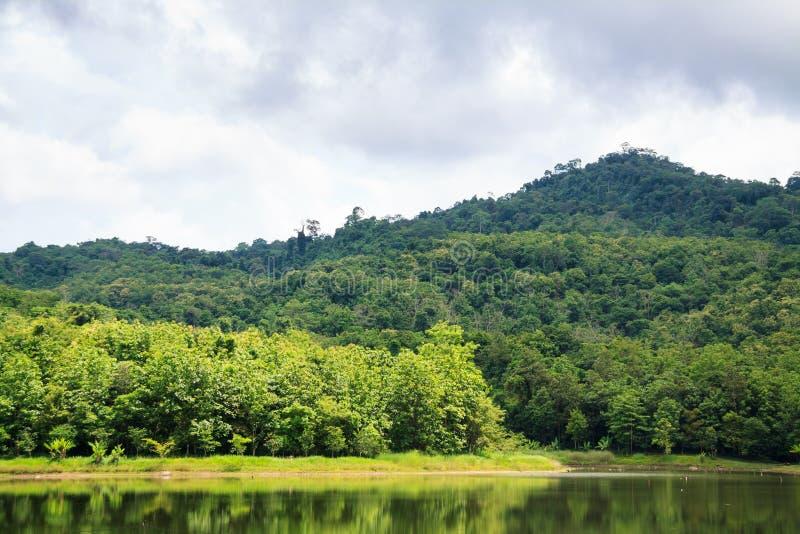 Reservoir bij de Natuurlijke Studie van Jedkod Pongkonsao en Eco-toerismecent royalty-vrije stock foto