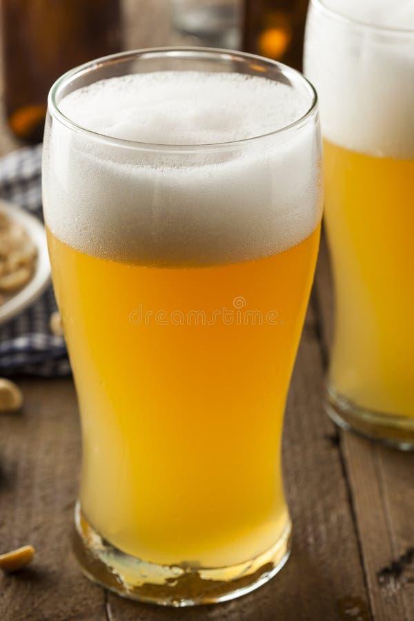 Resfreshing Lager Beer dorato fotografia stock libera da diritti